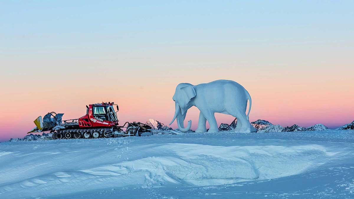 Pistenbully und Elefant Pollux - Hannibal Sölden