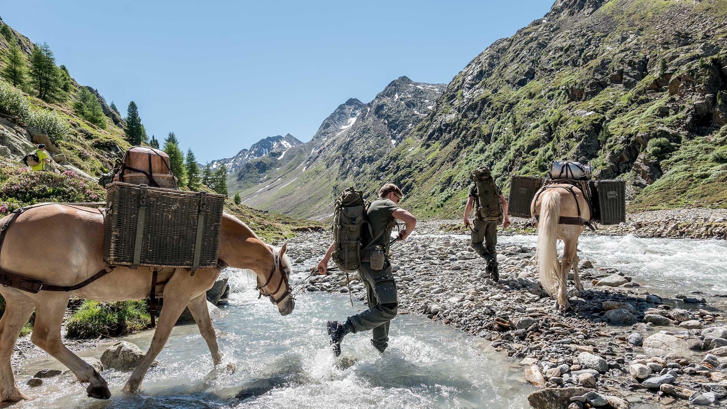 Haflinger im Wasser - Kulinarik Sölden Windachtal